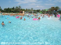 The Wave Pool Is A Major Attraction